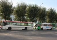 Автобусные маршруты Перми вновь будут распределяться по конкурсу.